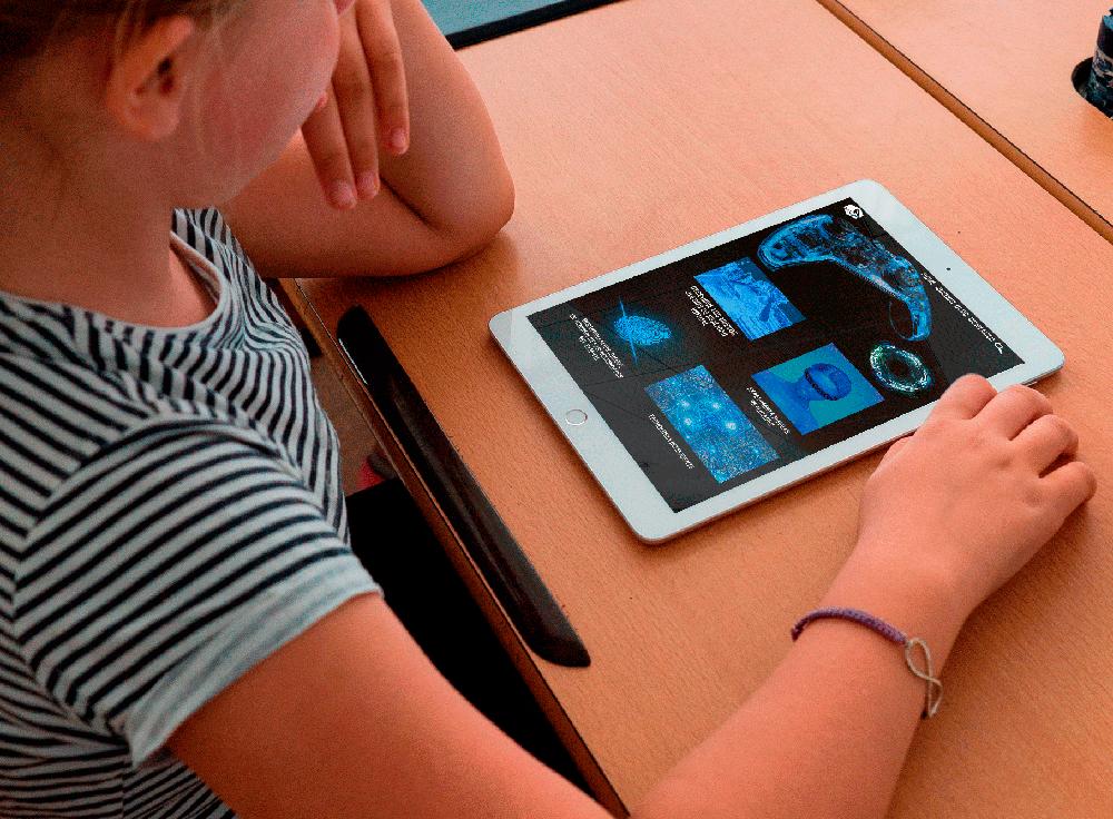 movli-tablet-diseño-creatividad-imaginación-proyecto-edicion-inventivo-ingenioso-nena